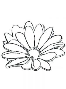 free coloring pages daisy flower
