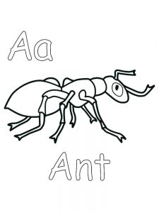 free coloring pages of ant to print