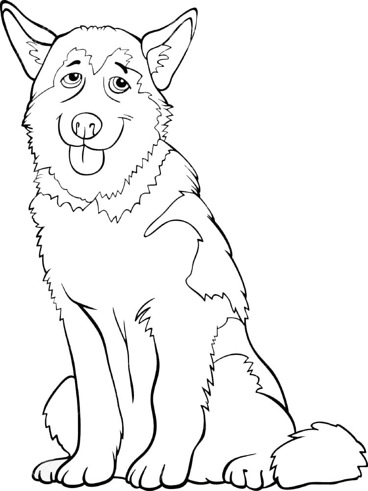 free coloring pages of real animals