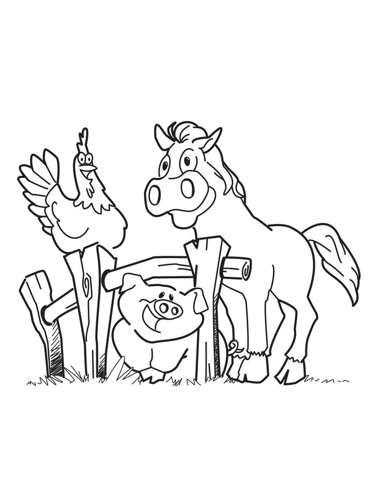 free printable coloring pages zoo animals