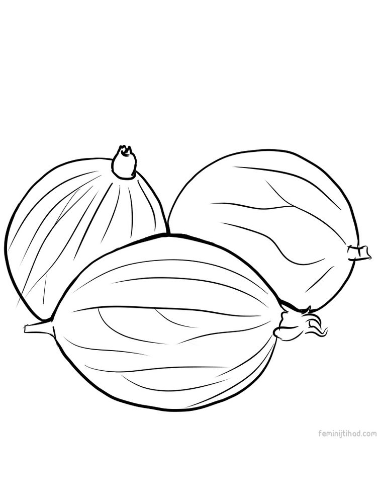 gooseberry coloring page free