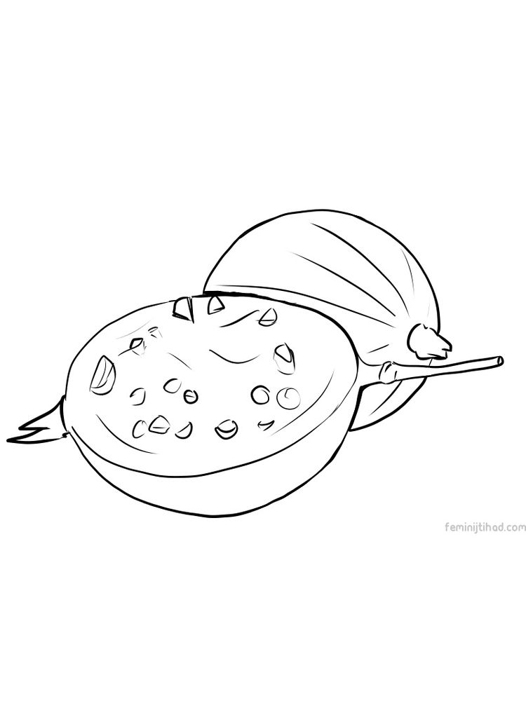 gooseberry picture for coloring pictures