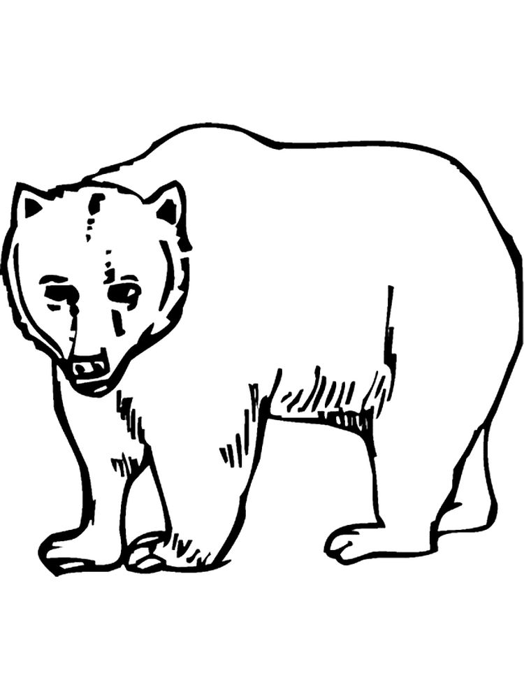 grumpy bear coloring pages