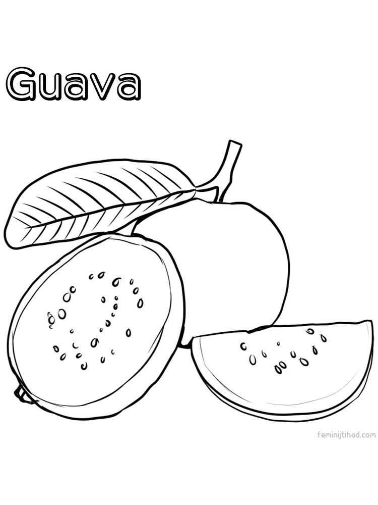 guava coloring page free