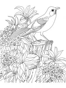 hard image coloring pages best