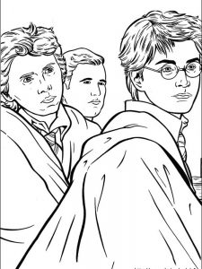 harry potter coloring sheets for adults