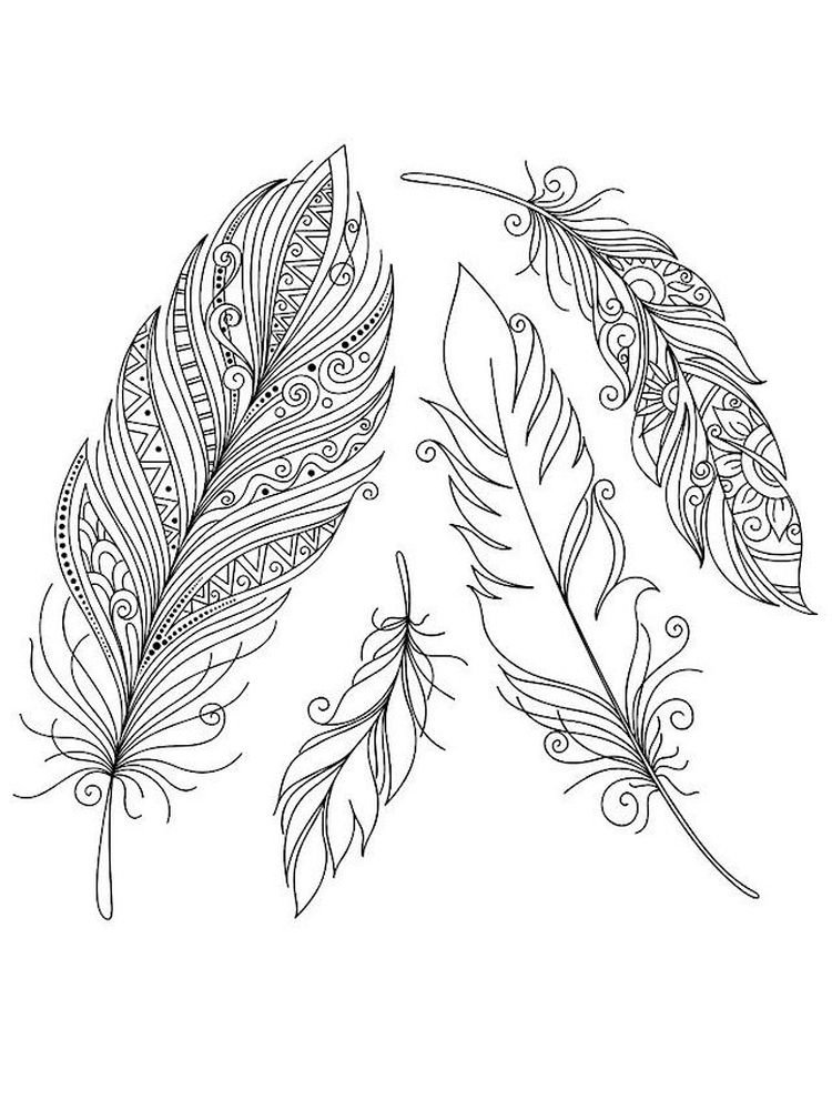 indian feather coloring pages