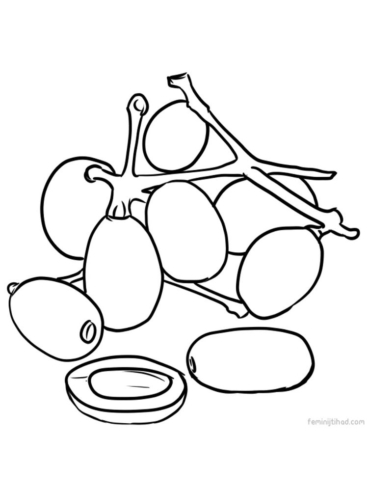 jambul image for coloring download