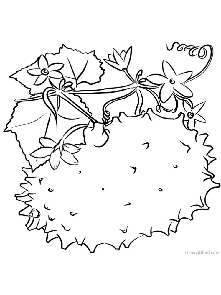 kiwano images for coloring page