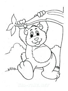 koala bear coloring pages
