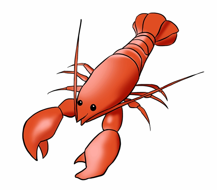 lobster coloring