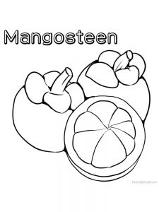 mangosteen coloring pages printable