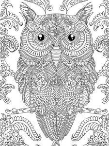 owl hard image coloring pages