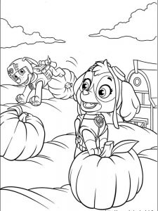 paw patrol coloring pages amazon