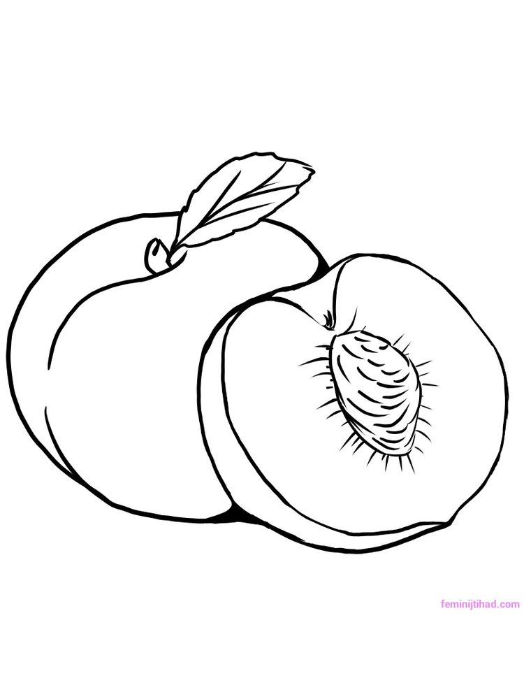peach coloring page download free