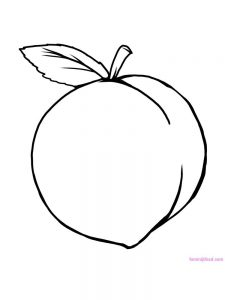 peach coloring pictures pdf