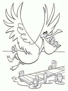 pelican coloring pages easy
