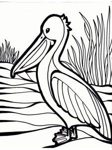 pelican coloring pages great
