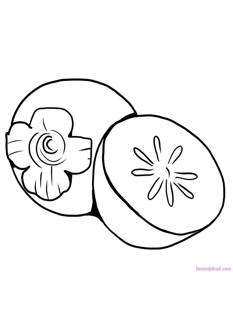 persimmon coloring pages pdf