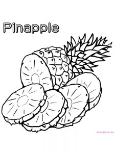 pineapple coloring page download