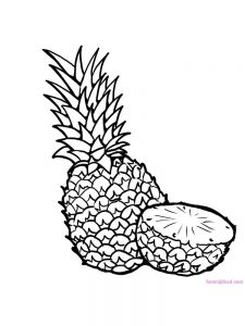pineapple coloring page download free