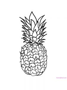 pineapple for coloring to print