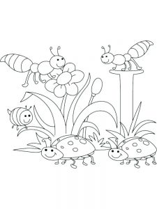 plant coloring pages science