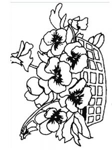 plant colouring page