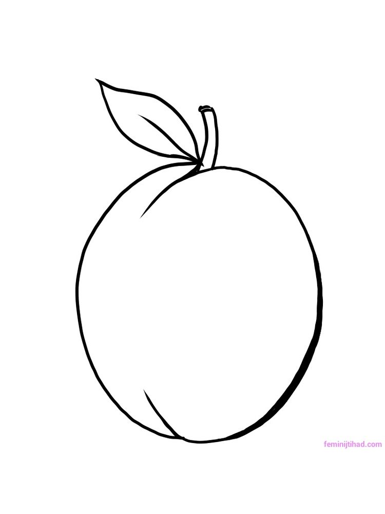 plum coloring pages print