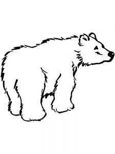 polar bear coloring pages for toddlers