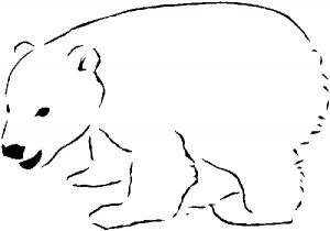 polar bears marine mammals coloring sheet