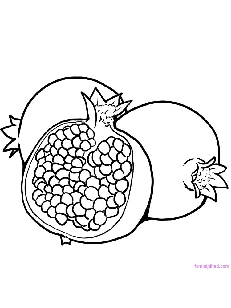 pomegranate coloring pictures