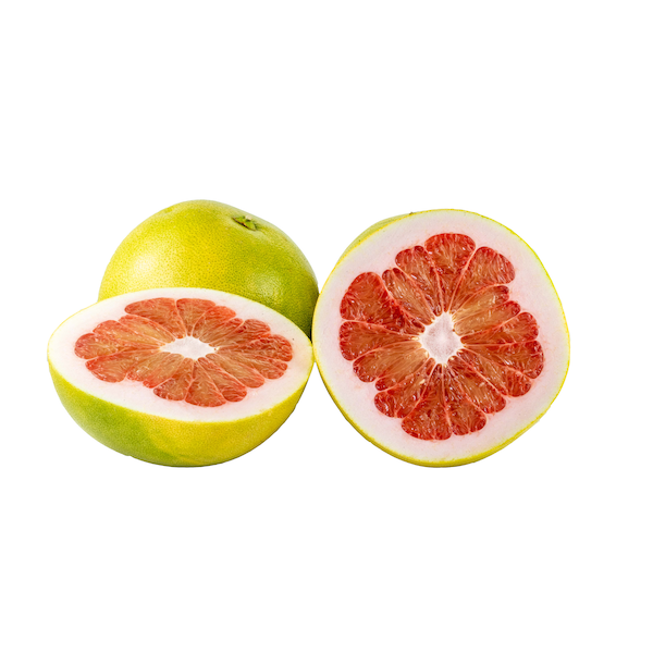 pomelo coloring image free