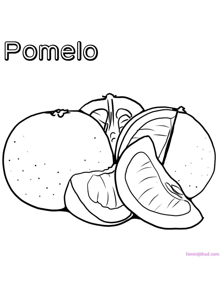 pomelo coloring page