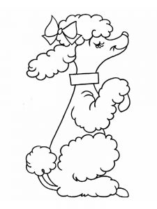 poodle coloring pages free