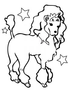 poodle coloring pages picture