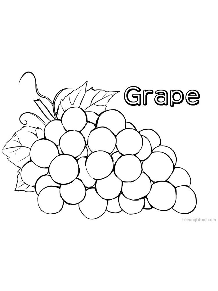print grape coloring images free