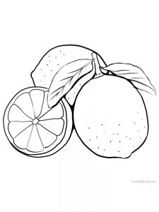 print lime coloring page 1