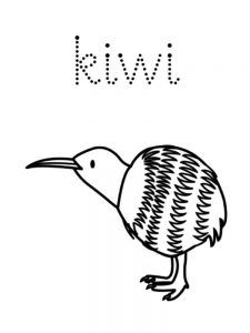 printable Kiwi coloring pages