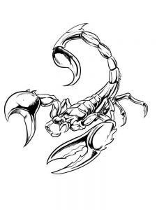 printable scorpion coloring pages
