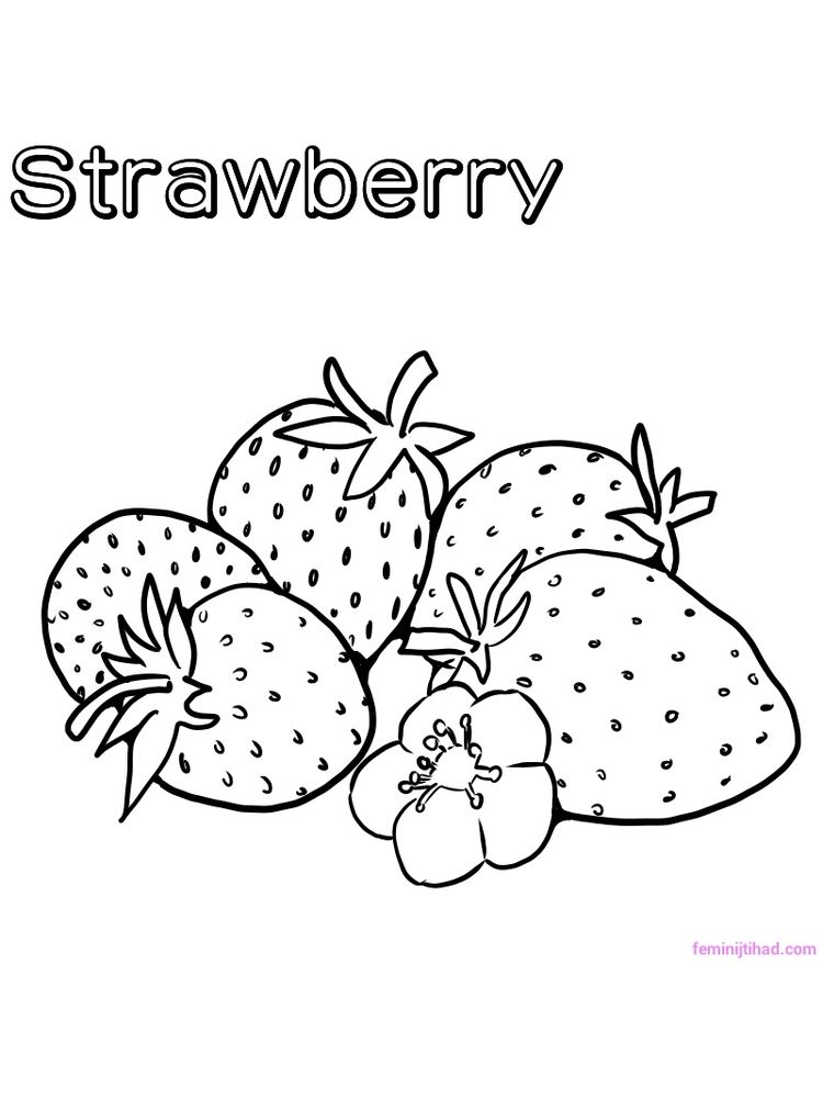printable strawberry coloring pages