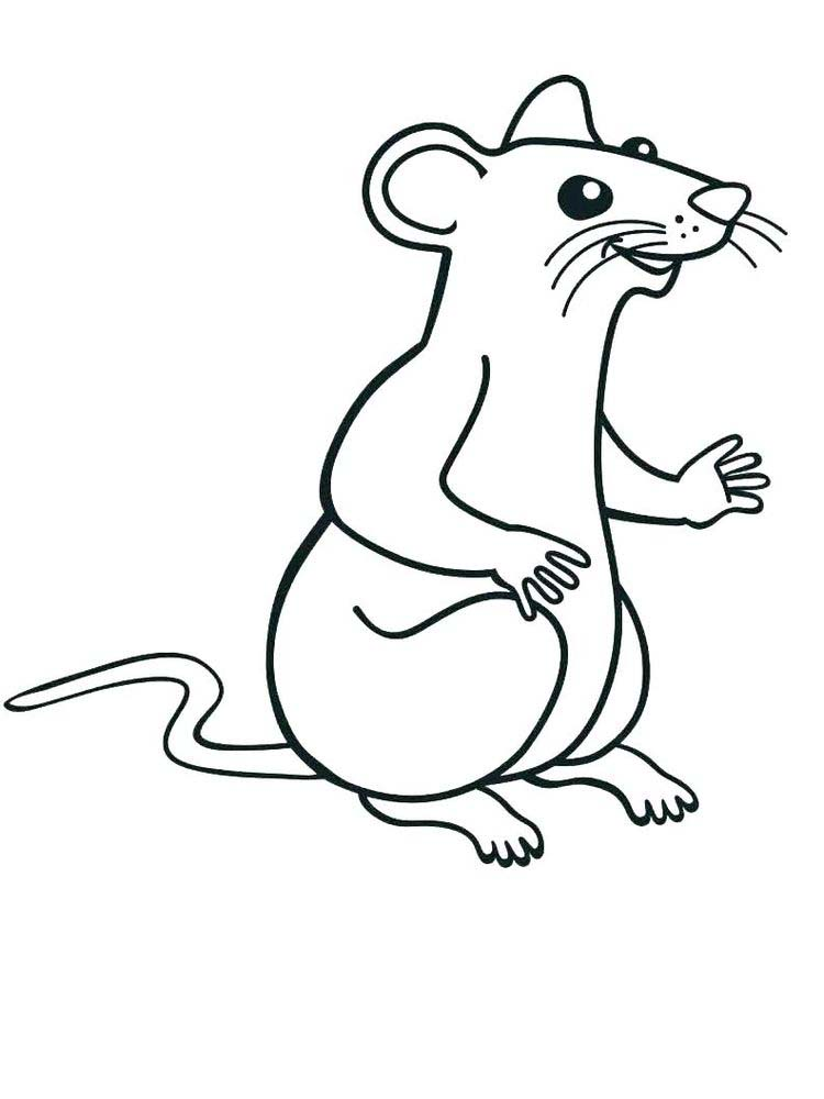 rat coloring pages free
