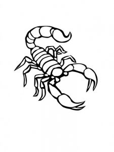 scorpion coloring pages print