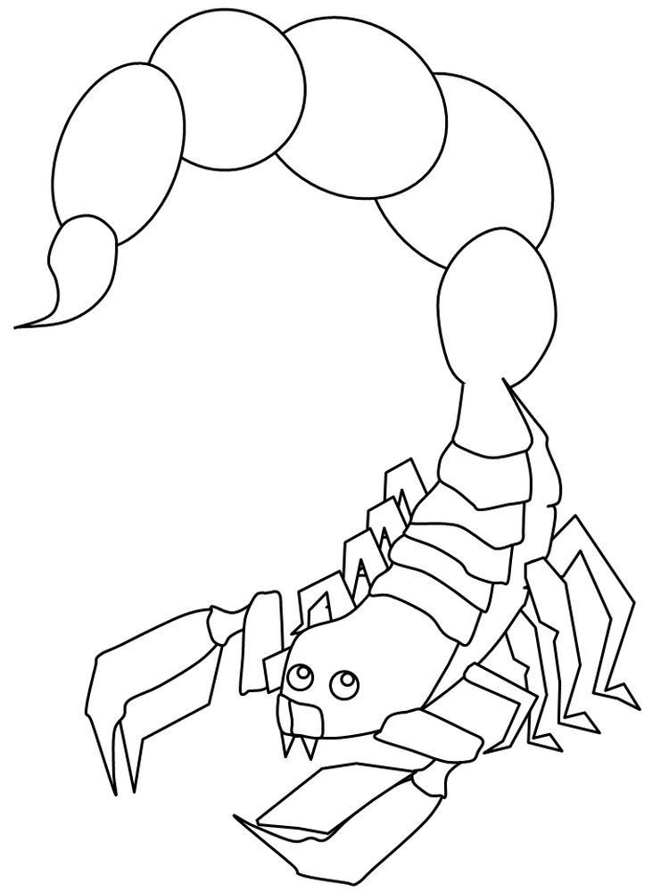 scorpion coloring pages to print