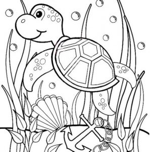 sea turtle coloring sheet with beautiful undersea scenery