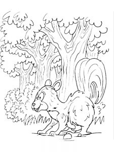 skunk coloring pages image