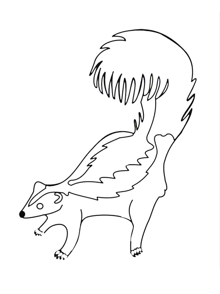 skunk coloring pages online