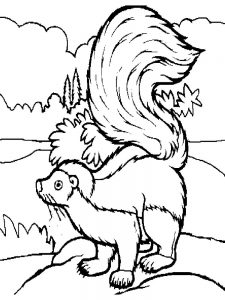 skunk coloring pages print