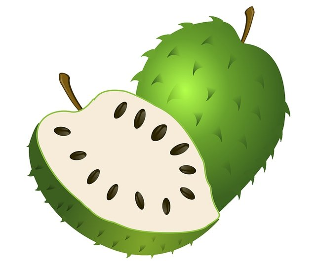 soursop coloring page