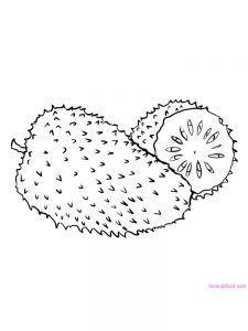 soursop coloring pages pdf